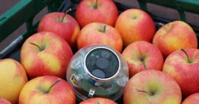neuer sensor für monitoring von obst