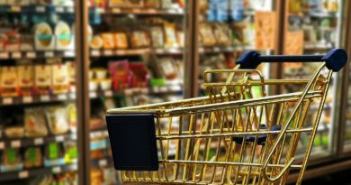 Nachhaltige Verpackungen sind im Focus von Wissenschaftlern