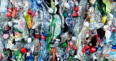 Im Plastikatlas geht es um die globale Plastik-Flut