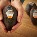 Edeka setzt auf neue Technologie für länger haltbares Obst