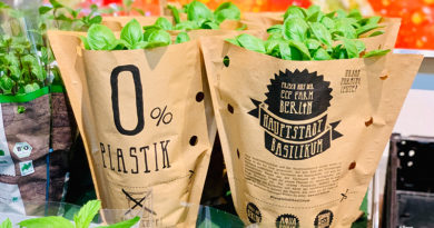 Rewe starts pilot project with basil pots packed without plastic