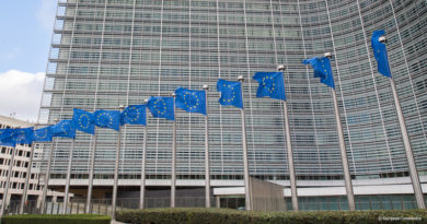 European Chemicals Strategy for Sustainability