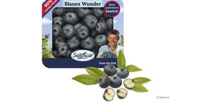 Verpackung für Beeren
