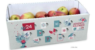 Apfelkorb als Adventskalender