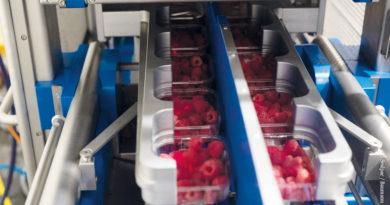 Neue Verpackung für Beeren