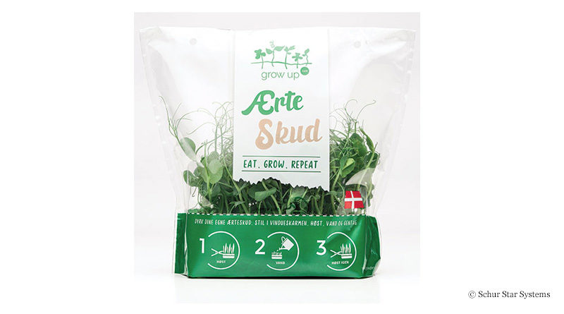 Bag for pea sprouts