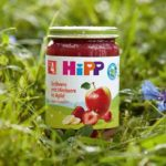 Hipp jars as a model