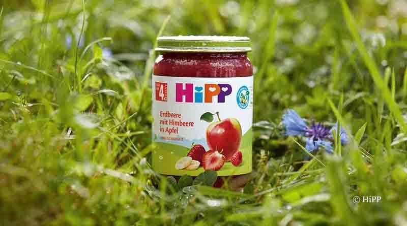 Hipp Gläschen als Vorbild