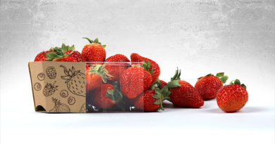 packaging ensures an adequatea sufficient and hygienic supply of food
